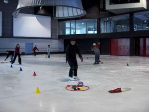 form_patinage5