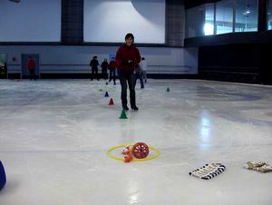 form_patinage6
